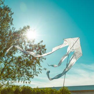 Sommererwachen 2 - Get Your Print